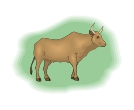 Bull Brown Animal Vector Clipart