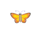 Butterfly Vector Free Clipart