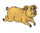 Pig Animals Vector Clipart
