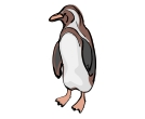 Penguin Drawing Birds Vector Clipart