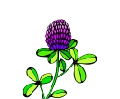 Flower Clover Vector Free Clipart