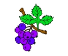 Bule Berry Fruit Vector Cliparts