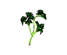Vegetables Greens 2 Vector Free Clipart
